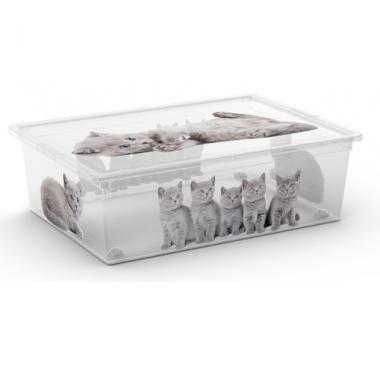 Hộp nhựa chứa đồ C-Box Style Puppy L KIS - Ý