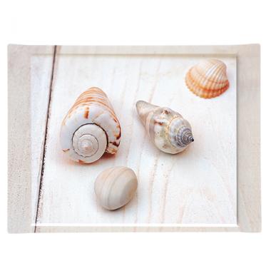 Khay nhựa hình chữ nhật họa tiết ốc biển Nuova - Ý