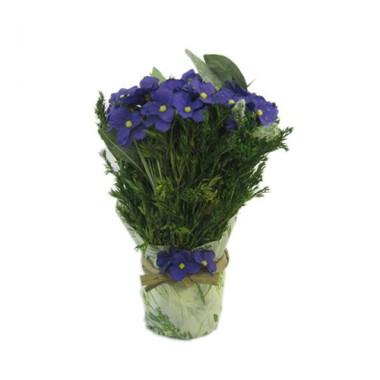 Bó hoa Violet Antwerp Srilanka