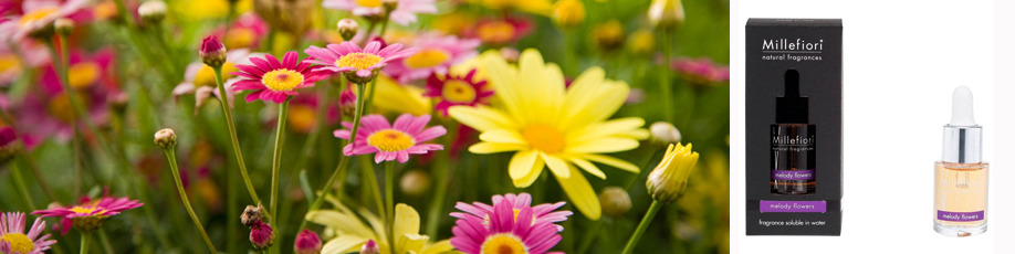 Tinh dầu Melody Flowers Millefiori
